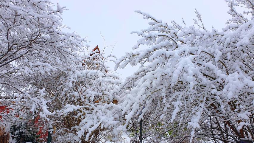 Winter und Schnee Treuchtlingen 08.02.2021