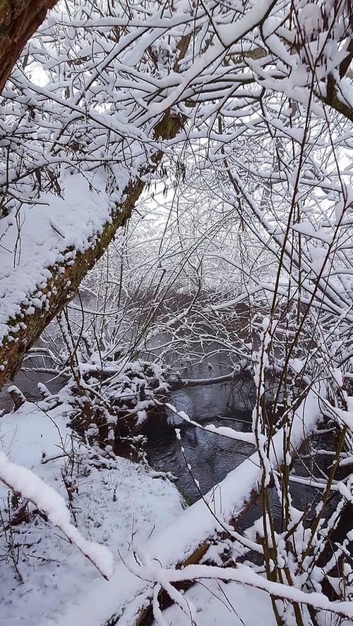 Winter und Schnee Treuchtlingen 08.02.2021 Schambach