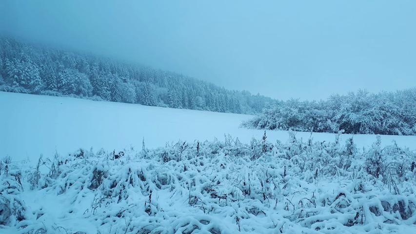 Winter und Schnee Treuchtlingen 08.02.2021 bei Schambach