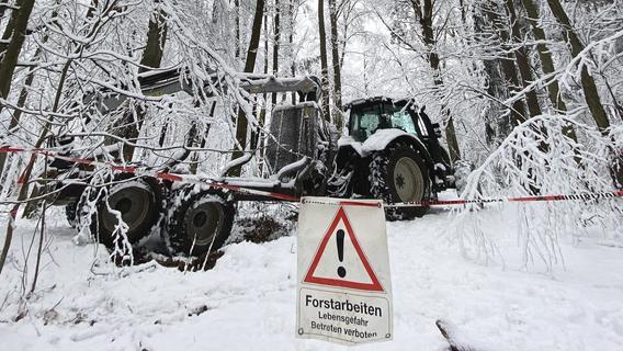 Lebensgefahr: Warum Winterwanderer die Wälder meiden sollten