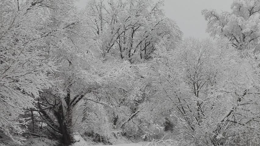 Ein Wintermärchen: Wunderschön verschneites Aurachtal in Rothaurach
