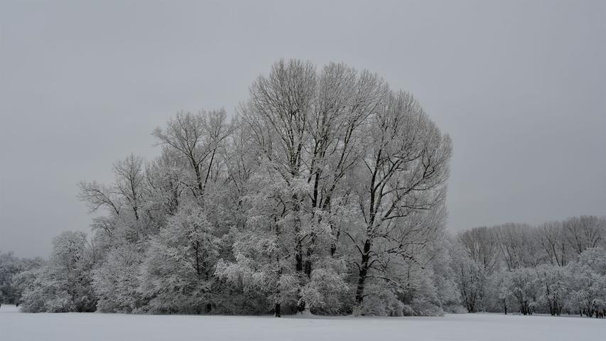 Traumhaft schön: Winter im Marienbergpark.