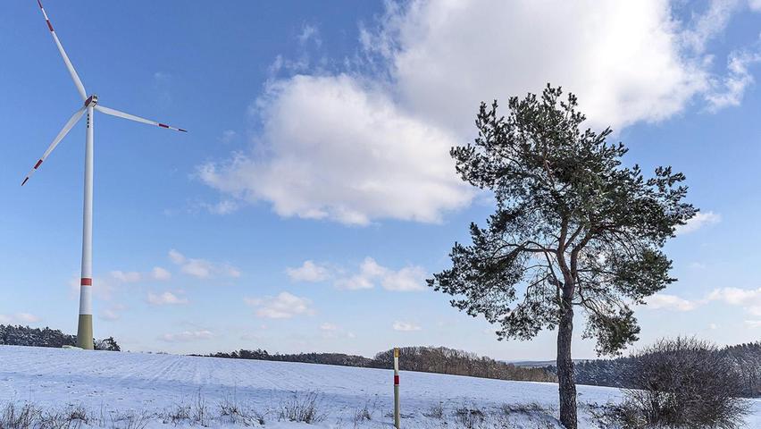 Im Steigerwald klirrt die Kälte so, dass man es sehen kann: Die Windanlage steht still, die Äste des Baumes tragen einen Eispanzer.