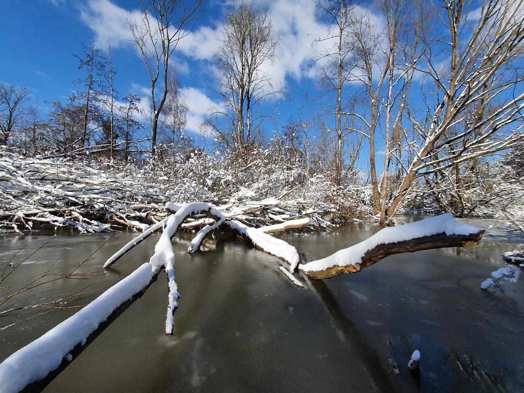 Strahlender Wintertag im Fürther Farrnbachgrund
