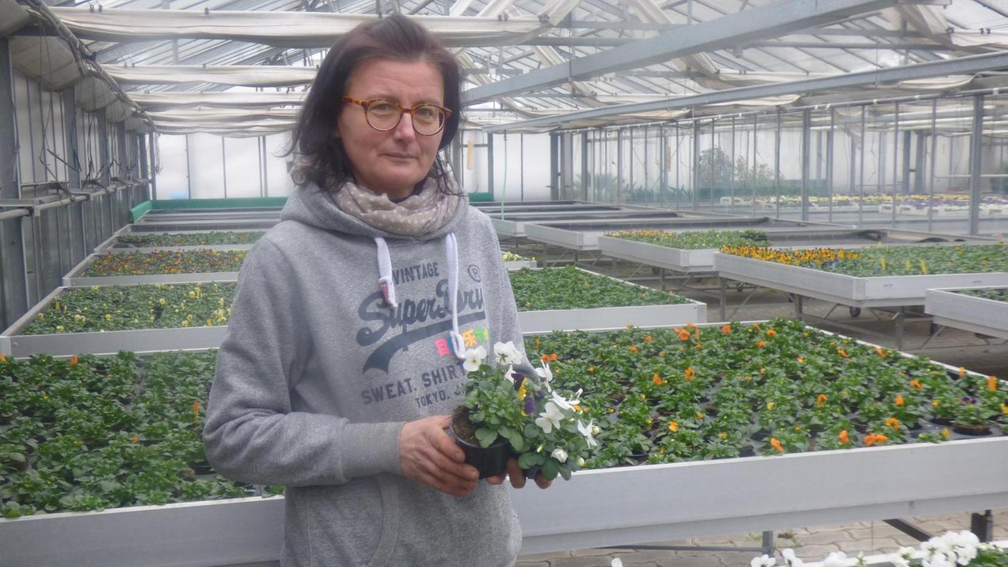 Die Discounter dürfen Blumen verkaufen, Christine Kraus, die vor sechs Jahren die Gärtnerei Wolf in Waischenfeld gepachtet hat, darf weder in ihren Laden noch in ihre Gewächshäuser Kunden lassen.