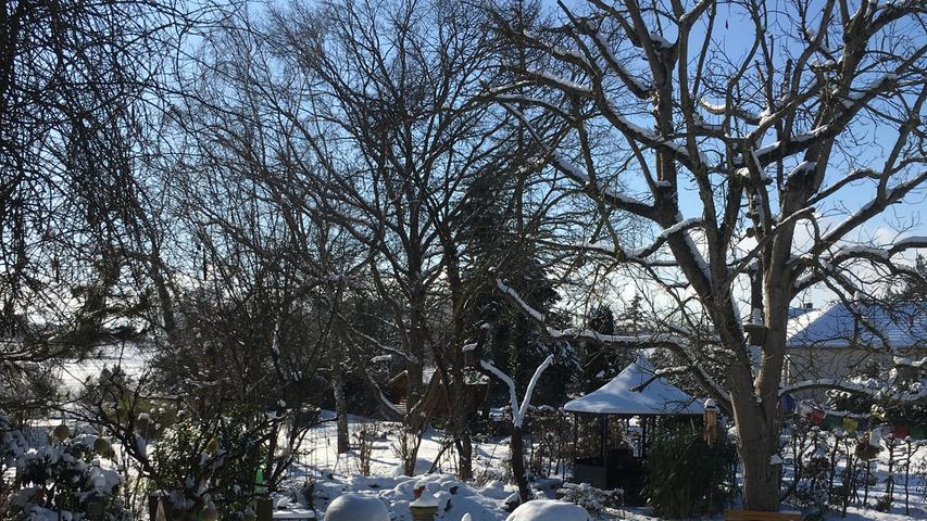 Das wunderbare Winterwetter hat NN-Leserin Gerti Fridrich in Poxdorf eingefangen.