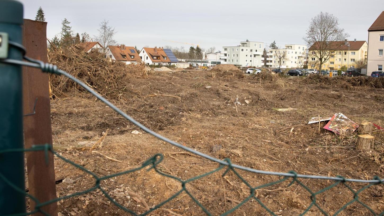 Das kleine Wäldchen westlich der Hansastraße in Unterfarrnbach steht nicht mehr. Es musste weichen, weil dort Wohnungen entstehen sollen.