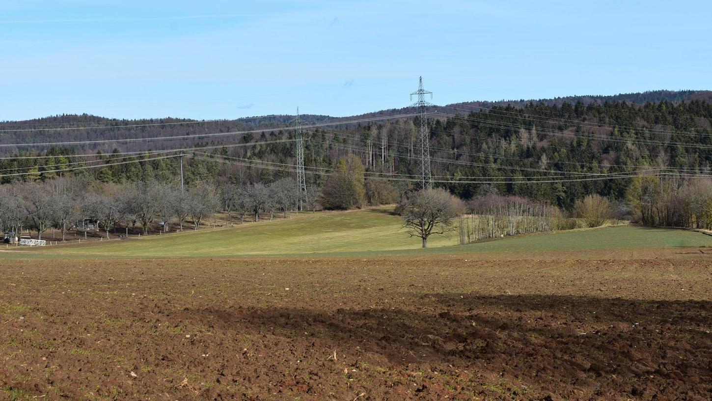 Auf dem Acker, der Wiese und der Fläche hinter den Leitungen soll nur die Hälfte des neuen Solarparks liegen. Gegenüber, vom Standpunkt des Fotos nicht sichtbar, befindet sich die andere Hälfte, die zum Teil im Landschaftsschutzgebiet liegen würde.