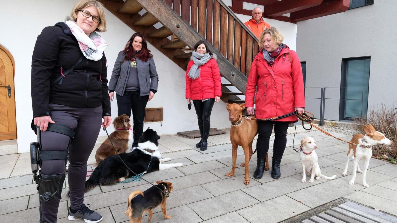 Lisa Müller (li.), die dank einer Orthese wieder laufen kann, freut sich über die Spendenzusagen von Manuela Schwarz (2.v.l.) und Claudia Frank (re.) von den Hundefreunden Neumarkt e.V. und von Sophie Stepper (Mitte) und Helmut Rauscher (hinten) von der Bürgerstiftung Region Neumarkt.