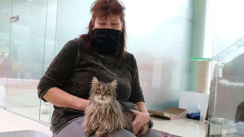 Tierpflegerin Veronika Stäblein mit Freigängerin Langos. Eineverschmuste Einzelkatze,die zuCoronazeiten wohl baldeinZuhause findet.