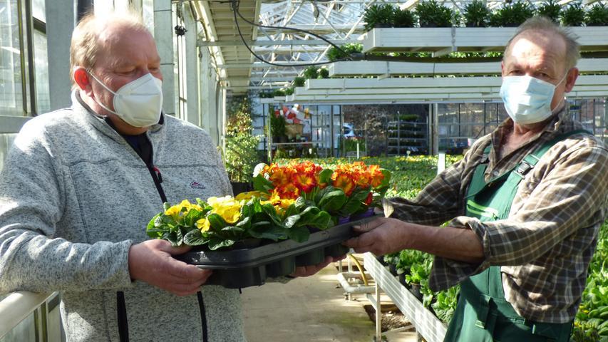 Im Auftrag seiner Frau fuhr Hans Neuner aus Kirchenbirkig (Stadt Pottenstein) am Monatgvormittag gleich in die Gärtnerei Schrüfer um eine Kiste Primeln für die Blumenkübel vor seiner Haustür zu besorgen.
