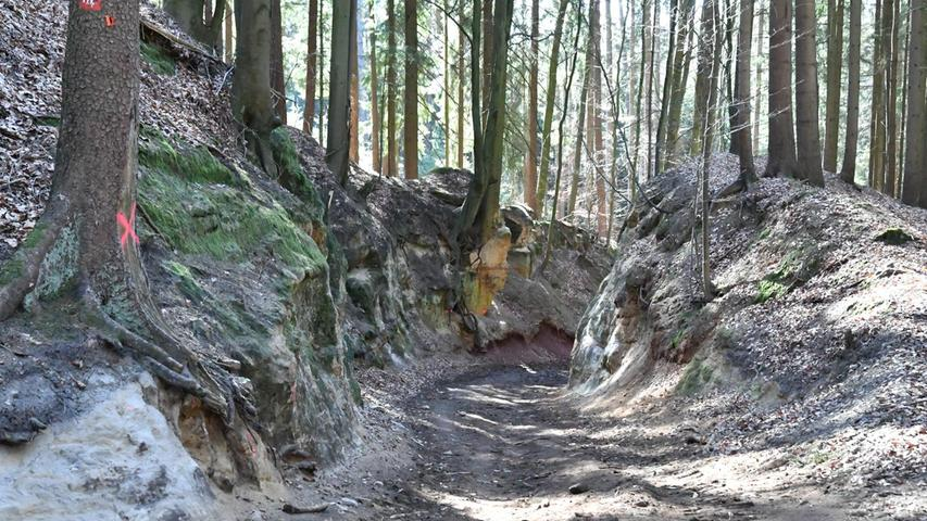 Der alte Hohlweg am Winnberg soll zum Wirtschaftsweg ausgebaut werden. Das Vorhaben hat derart hohe Wellen geschlagen, dass es im TV thematisiert wurde.