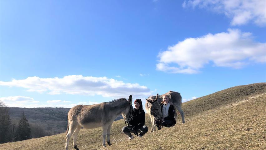 Die Esel gehören der Familie Gentner aus Spielberg. Um die beiden zu bewegen, unternahmen Anne Remberger (links) und Eva Maria Pawlicki aus Gnotzheim, die sich um die Tiere kümmern,einen Ausflug zum Gelben Berg.