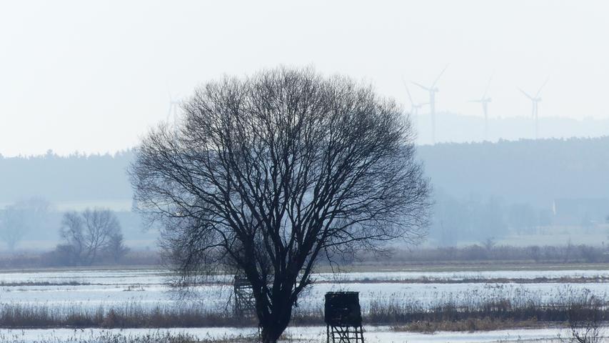 Die überschwemmten Wiesen im Wiesmet gehören auch zum Frühling. Bald brüten hier wieder Kiebitz und Großer Brachvogel.