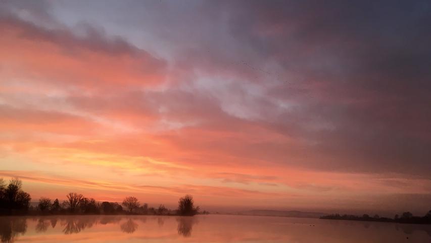 Nicht nur viele Vögel lassen sich auf der Vogelinsel am Altmühlsee beobachten, sondern offensichtlich auch sehr spektakuläre Sonnenaufgänge.