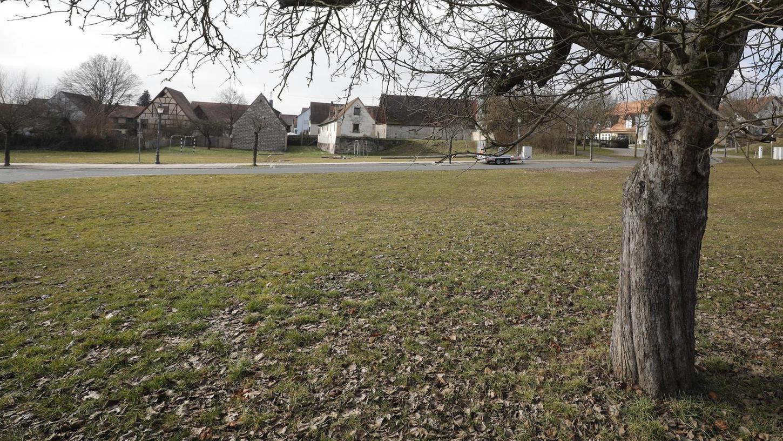 Welche Ortschaft hat schon mitten im Dorf so viel Platz? Die Wiese mit Obstbäumen vor dem Rathaus ist wohl Hallerndorfs größter Schatz.