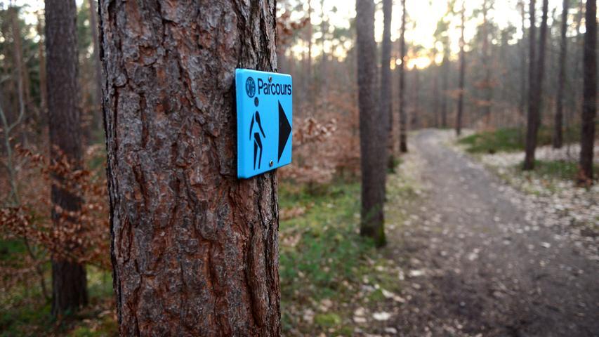Hinweisschilder lotsen den Jogger durch den Stadtwald.  Foto: Hans-Joachim Winckler