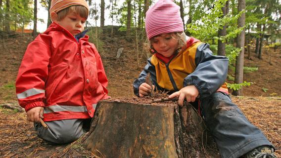 Besondere Kita: Der kleine Ableger im Abenberger Wald