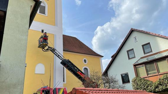 Königsteiner Feuerwehr rettet Falke aus Not