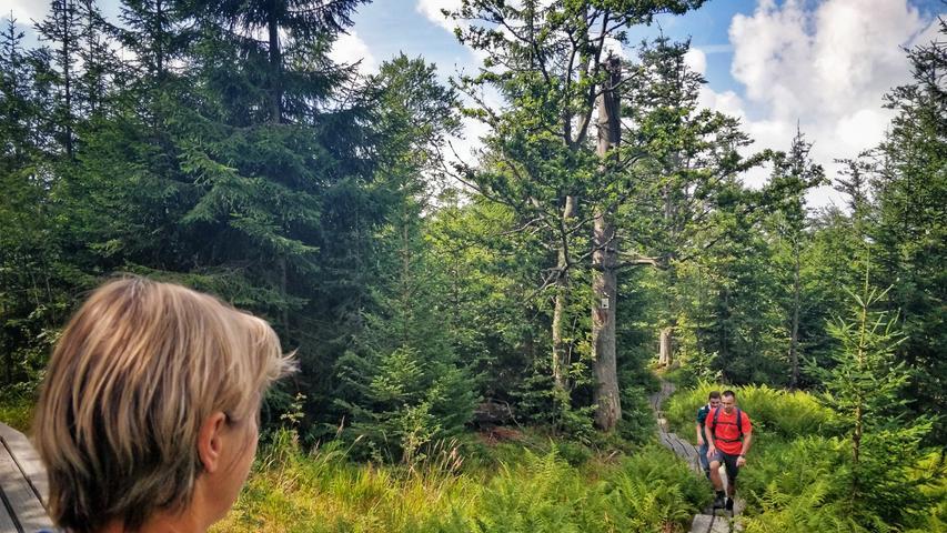 Wandern abseits der Pfade ist im Nationalpark untersagt, die Tourenwege sind gut ausgeschildert und leicht zu begehen.