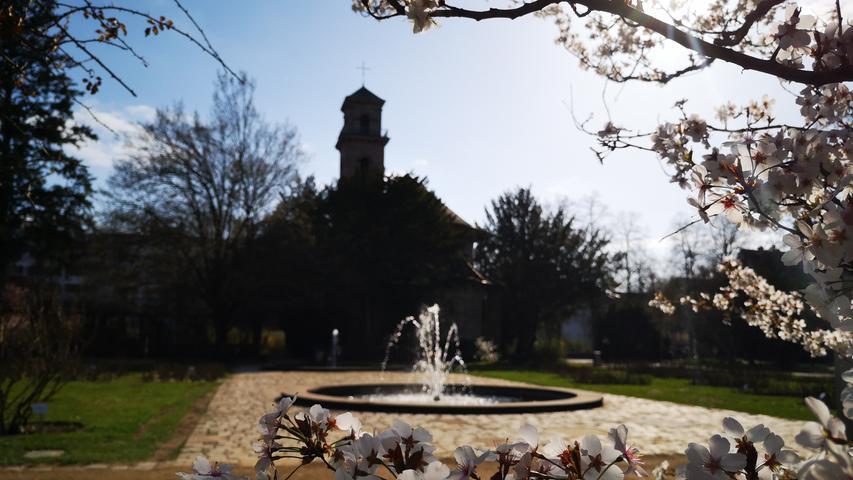 Der Frühling ist auch im Fürther Stadtpark angekommen.