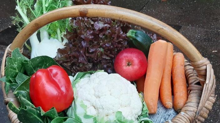 Regionale Produkte, zum Teil in Bio-Qualität, wird es auf dem Schwaiger Wochenmarkt geben.