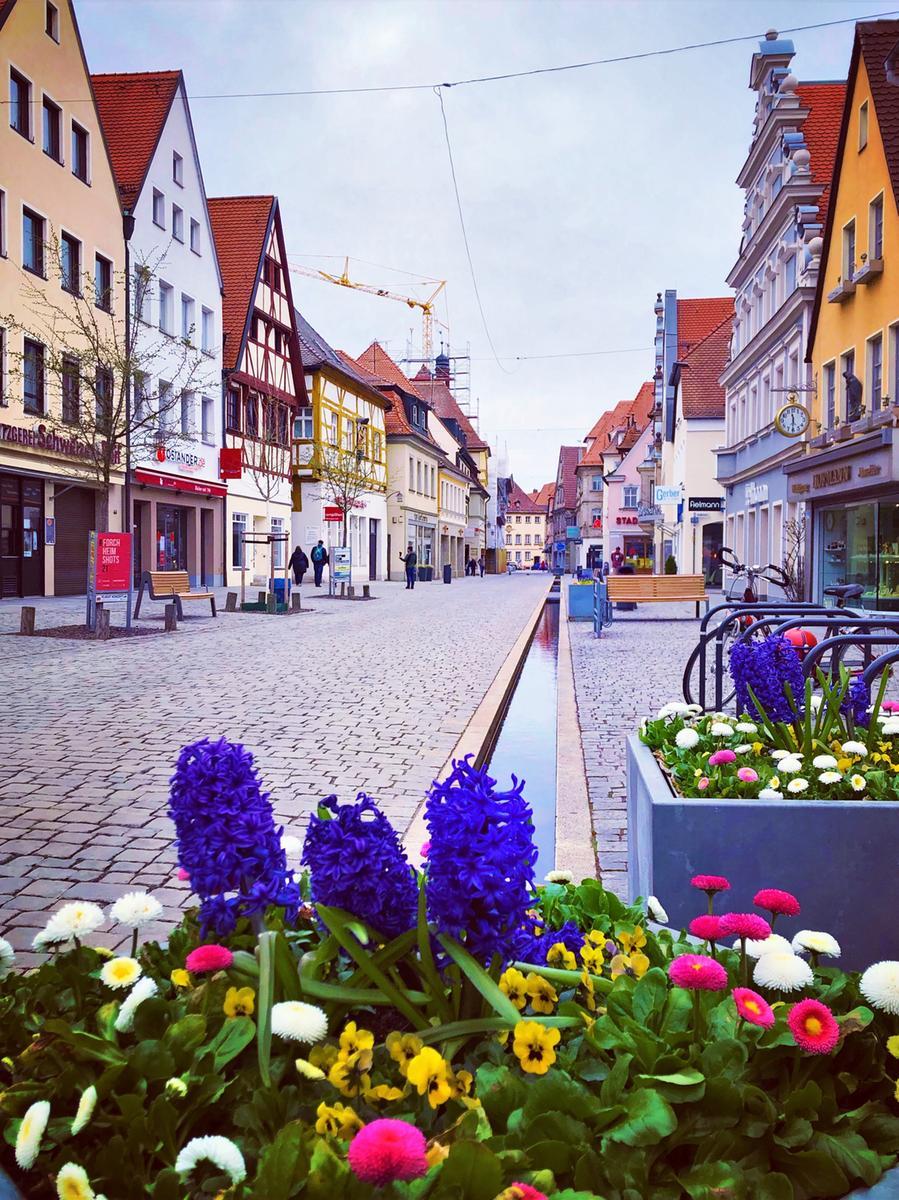 Frühlingsblumen in der Forchheimer Hauptstraße hat Lea-Verena Meingast eingefangen.