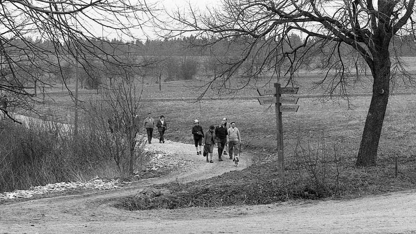 """""""Retour à la nature"""" – """"Zurück zur Natur"""". Beinahe zwei Jahrhunderte nach dem Tod des französischen Philosophen Jean Jacques Rousseau, von dem dieser Ausspruch stammt, entdecken die Nürnberger Wälder und Wiesen wieder. Hier geht es zum Kalenderblatt vom 13. April 1971: Flucht vor Phonzahlen und Autoabgasen."""