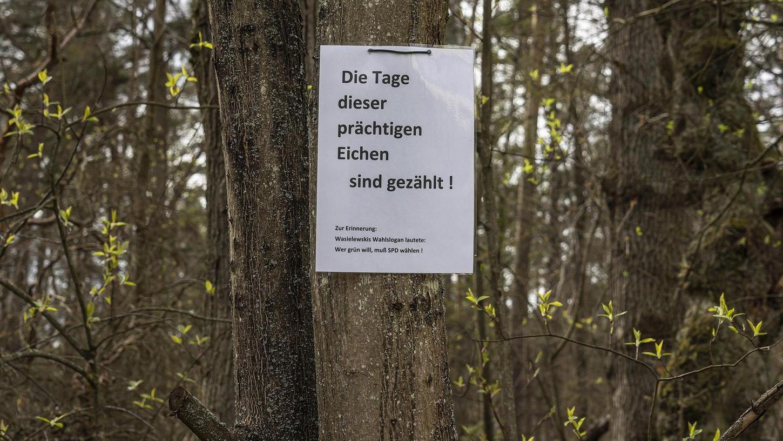 Dieses Waldstück nahe der Spardorfer Grundschule soll bald dem Neubau des Sportplatzes weichen. Nun haben Gegner der Pläne Protestplakate aufgehängt.