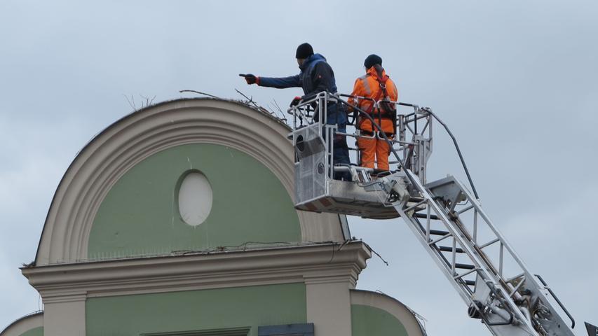 Mit Hilfe der Drehleiter der Gunzenhäuser Feuerwehr beseitigen Mitarbeiter des Bauhofs das Nest und bauen eine Konstruktion.