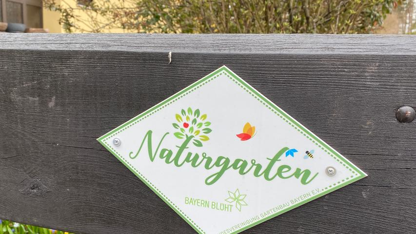 Über unzählige bunte Blüten freuen sich momentan nicht nur Rolf und Heiko Würth aus Eckersmühlen. Im 500 Quadratmeter großen Garten sorgt der Frühling dafür, dass allerhand Buntes aus der Erde schießt: Kein Wunder, dass viele Bienen und Insekten eine Rast bei den Würths einlegen. Dafür überreichte der Verein Landesvereinigung Gartenbau Bayern nun eine Urkunde im Rahmen des Projekts