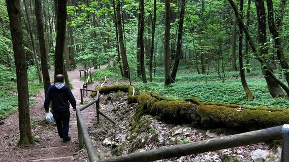 Steinerne Rinne bei Wolfsbronn: Hier besser die Finger vom Bärlauch lassen