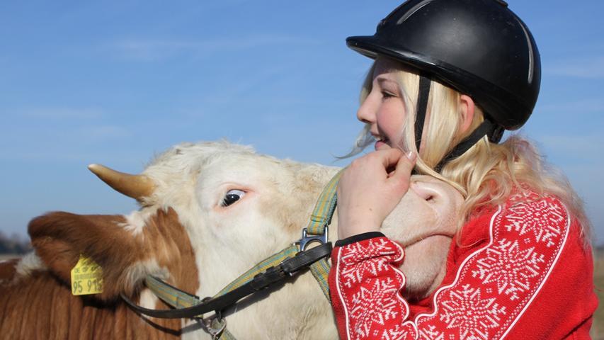 Sie wollte ein Pferd, jetzt reitet sie auf einer Kuh