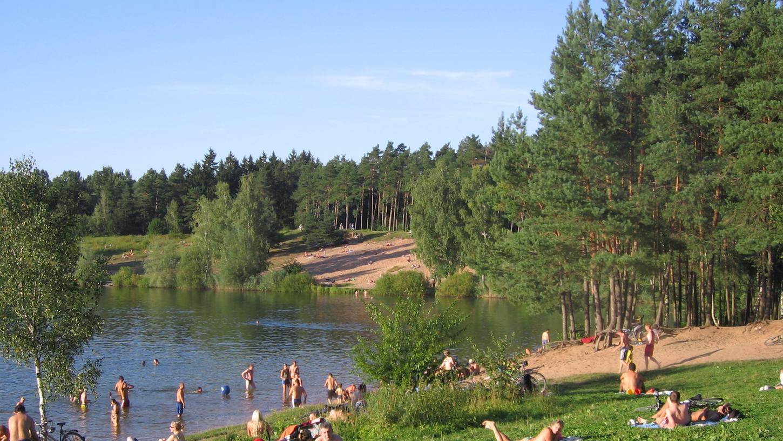 Der Reichswald ist ein beliebtes Naherholungszentrum.