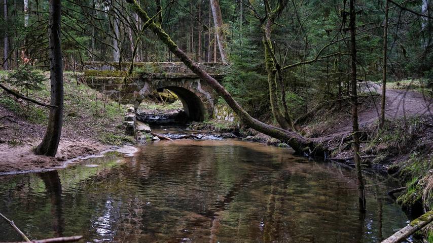 Wilde Landschaft: Die Röthenbachklamm bei Nürnberg Brunn. Die Natur wird sich hier selbst überlassen.