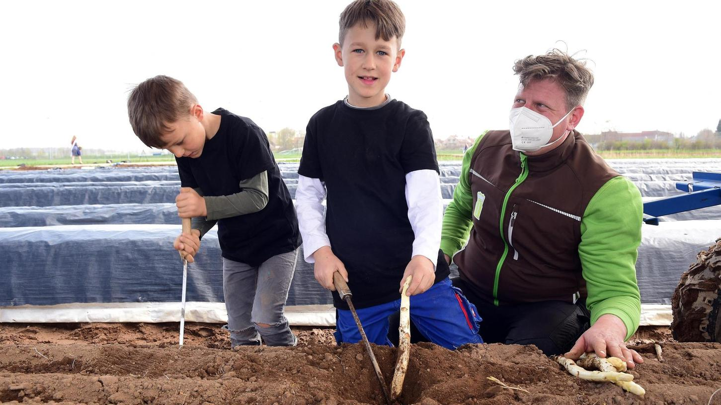 Robert Berngruber holt mit seinen Söhnen Erwin und Arno (links) die allerersten Stangen aus der Erde.