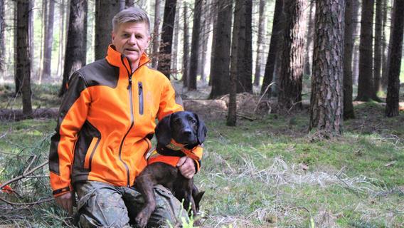 Supernase Schweißhund: Über die Detektivarbeit einer Nachsuche