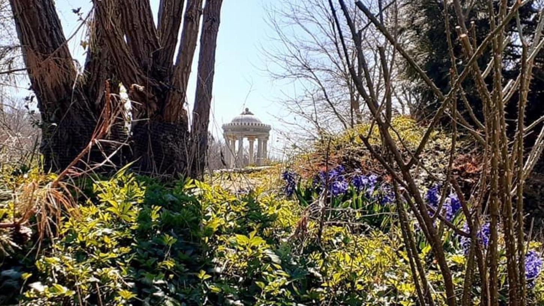 Der Frühling ist endlich in Mittelfranken angekommen und damit darf nun auch die Saison im Schlosspark Dennenlohe beginnen, nachdem viel Wirrwarr um die Corona-Regeln herrschte.