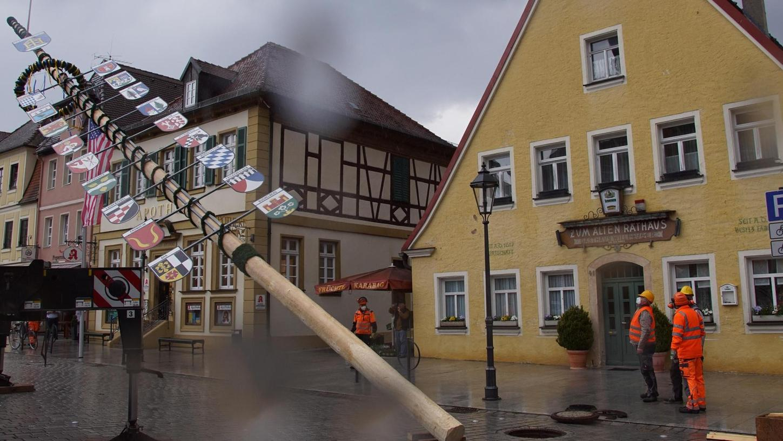Schwere Schräglage: Mit Hilfe eines Kranwagens stellten Mitarbeiter des städtischen Bauhofs Donnerstagnachmittag den Maibaum auf dem Marktplatz auf. Gerade in diesem Moment begann es zu regnen.