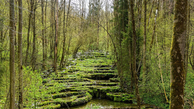 Trotz Holzgeländer und eindeutigen Hinweisschildern: Besucher betreten die fragilen Stufen der Sinterterrassen trotzdem – auf der Suche nach dem besten Fotomotiv.