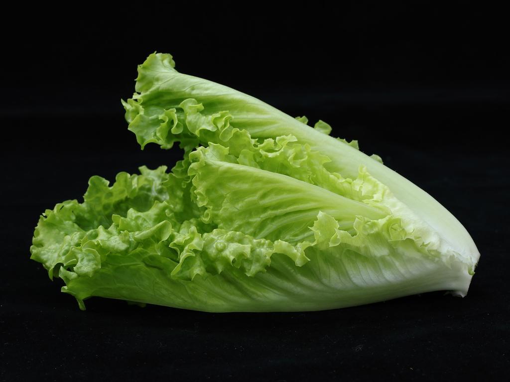Obwohl Römersalat oder Romana-Salat zu rund 92 Prozent aus Wasser besteht, hat er durchaus beachtliche Mengen an gesunden Nährstoffen zu bieten. Vor allem mit Vitamin C kann das Blattgemüse Punkte sammeln: Römersalat enthält davon mit 24 Milligramm pro 100 Gramm mehr als jeder andere Salat.