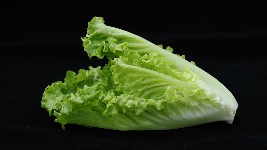 Obwohl Römersalat oder Romana-Salat zu rund 92 Prozent aus Wasser besteht, hat er durchaus beachtliche Mengen an gesunden Nährstoffen zu bieten. Vor allem mit Vitamin C kann das Blattgemüse Punkte sammeln: Römersalat enthält davon mit 24 Milligramm pro 100 Gramm mehr als jeder andere Salat.  Außerdem haben im Oktober Eissalat, Endivien, Feldsalat, Kopfsalat, Rucola und Radiccio Saison.