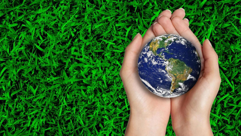 Treuchtlingen möchte sich auf lokaler Ebene für mehr Klimaschutz engagieren - und plant, mithilfe einer Förderung einen Klimaschutzmanager einzustellen.