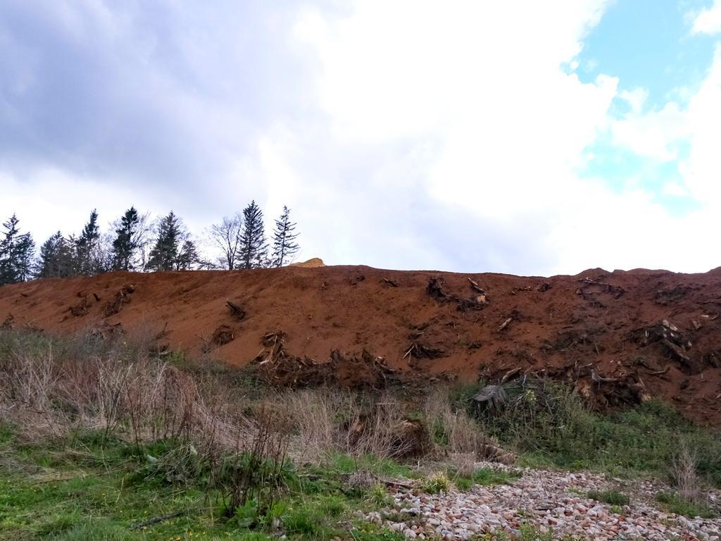 Postbauer-Heng; 05.05.2021; Sandgrube auf dem Dillberg; ; Foto: Günter Distler