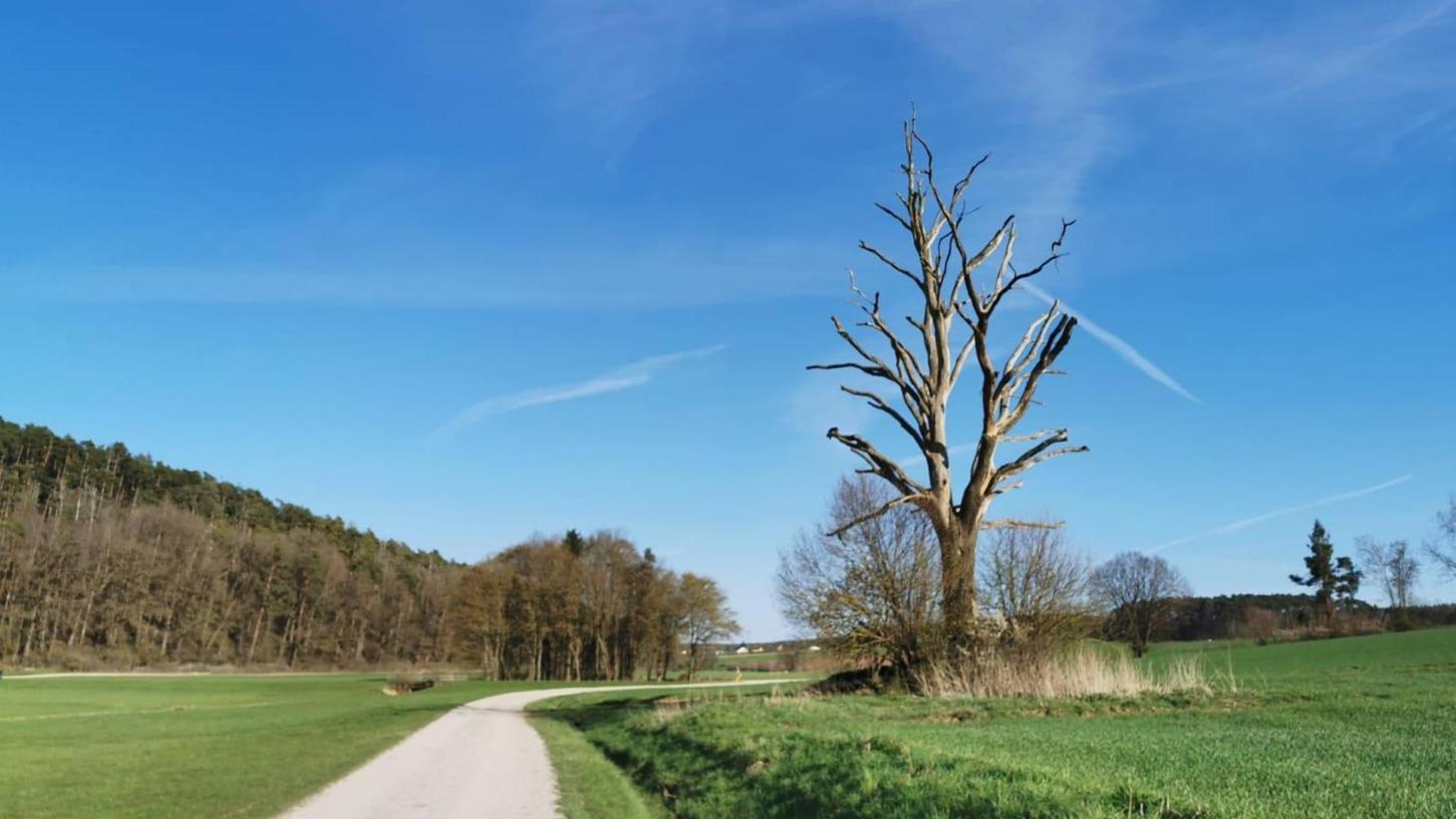 Ein Eyecatcher entlang der Laufstrecke, die landschaftlich reizvoll auch durchs Schwabachtal führt.