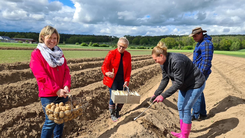 Auch wenn es noch keine frischen Kartoffeln gibt, landet Küche seit Wochen in vielen fränkischen Familien auf dem Herd.