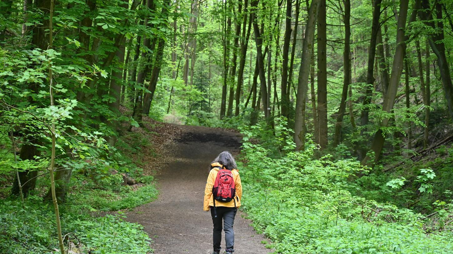 Spaziergänger genießen die Ruhe und die besondere Atmosphäre des Kalchreuther Waldes.