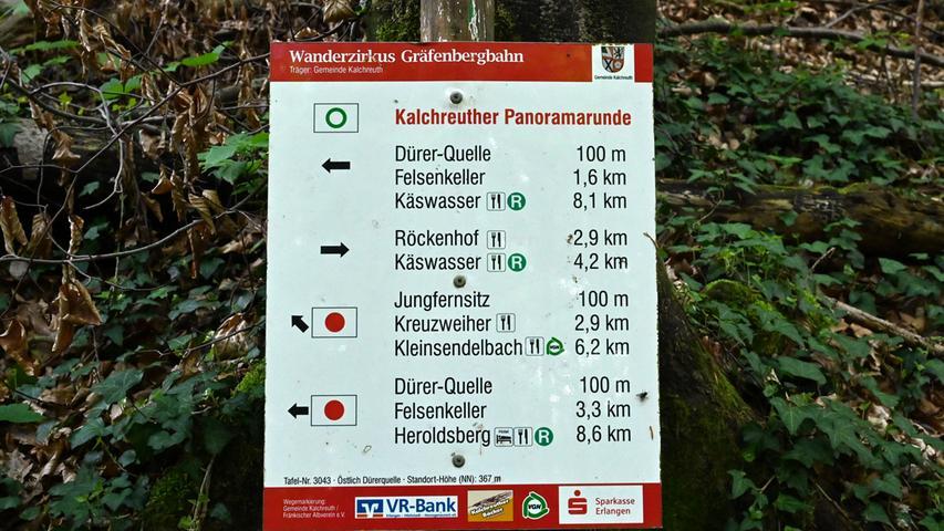 Mit dem Förster Siegfried Dörfler unterwegs im Märchenwald bei Kalchreuth Foto: Klaus-Dieter Schreiter