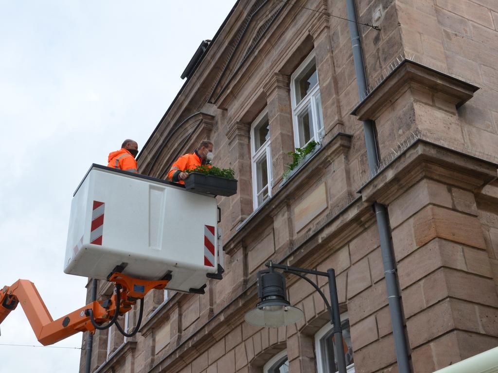 Stadtgaertnerei Roth Fruhlingsblühen Foto: Yevheniia Frömter