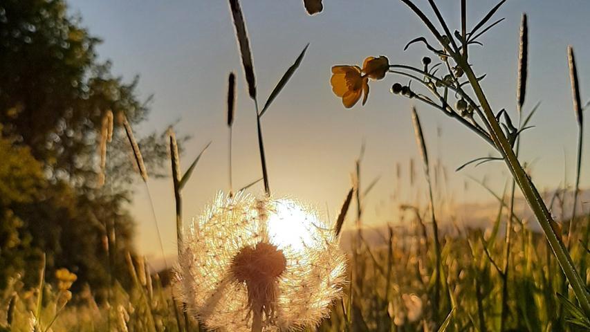 Der Sonnenuntergang im Mai gaukelt ein bisschen Sommergefühle vor.